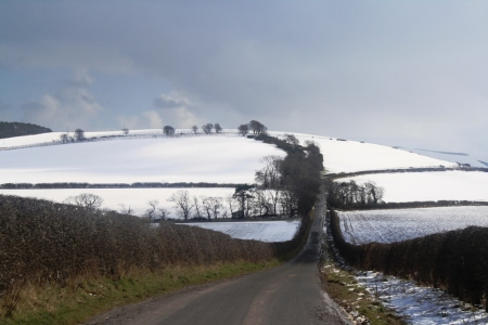 Country lane and snow