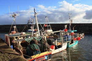 Fishing boats in the Old Harbour