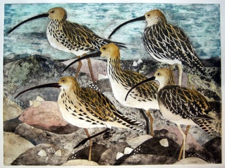 hooper-curlew-collagraph
