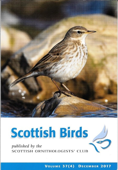 Scottish birds front