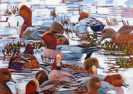 Edwards 1 Wigeon interactions